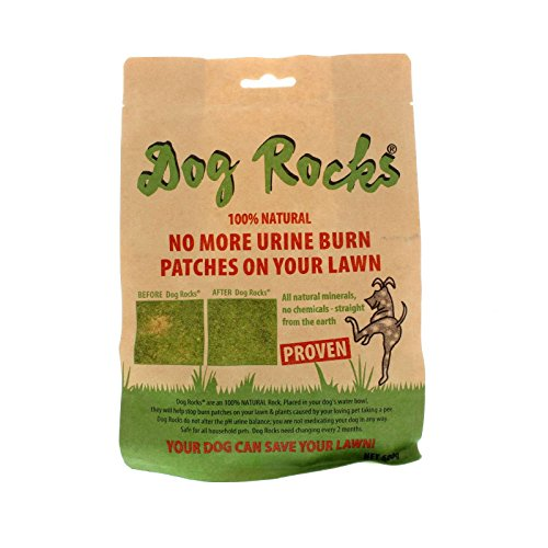 Dog Rocks - Prevent Grass Burn Spots by Urine - Save Your Lawn from Yellow...