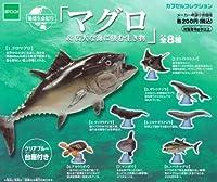 地球生命紀行マグロ&広大な海に棲む生き物 クジラ マンタ エポック(全8種フルコンプセット)
