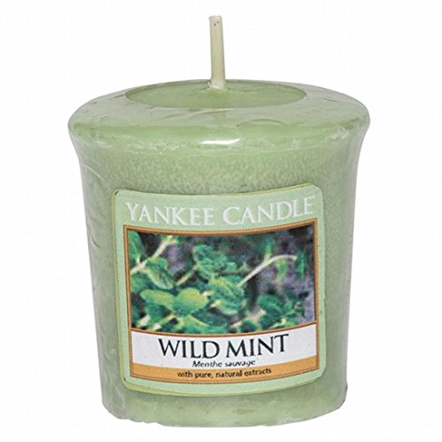 吸収剤チャンス柔らかいYANKEE CANDLE(ヤンキーキャンドル) YANKEE CANDLE サンプラー 「ワイルドミント」6個セット(K00105290)