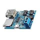 YWF Kit de electrónica Tablero de decodificador sin pérdida con módulo de Amplificador de Potencia TF Tarjeta de decodificación de la Tarjeta MP3 para máquina