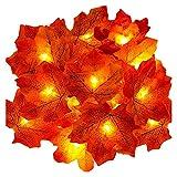 Luces de hadas, 30 luces de hoja de arce, luces de jardín, luces...