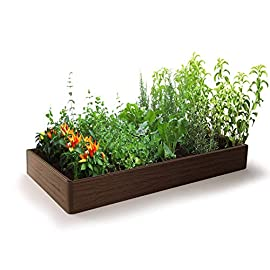 Raised Garden Bed - Outdoor Garden or Patio for Vegetable Flower - Rectangular Planter – Easy and Fast Assembly 6 ✔ Raised Garden Beds - easily build and yield a successful garden without breaking your budget. ✔ Simple Easy and Fast Assembling - Super easy assembly for a fast and easy garden set up so you can use all your time to the take care of your plants! ✔ Long lasting and Sturdy Frame - Top grade materials for a high a quality garden that will last for years and keep your plants growing.