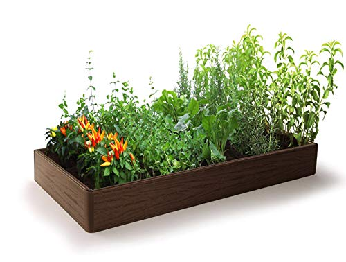 Miracle Grow - Cama de jardín – Plástico WPC Resistente, Maceta ...