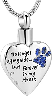 No Longer by My Side,But Forever in My Heart Carved Locket Cremation Urn Necklace for Pet Dog Cats