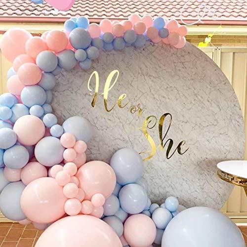 Lake Blue Pink Ballon Girlande gewölbt Kit, 16 Fuß Baby 110 rosa und hellblaue Luftballons für Seine oder ihre Gender Show Party,