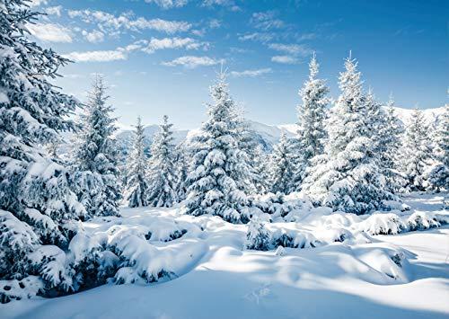 LTLYH 2,1 x 1,5 m Weihnachten Neujahr Party Hintergrund Winter Landschaft Hintergrund Winter Wald Eis und Schnee Welt Thema Baby Dusche Banner für Fotografie Kinder Erwachsene Fototapete 106