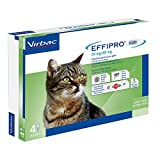 Virbac 104836022 Effipro'Duo Gatto 4Pip
