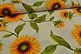 Stoffe Schulz | Canvas Deko Stoff, Sonnenblumen | Meterware