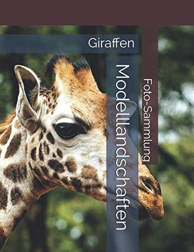 Giraffen - Modelllandschaften - Foto-Sammlung