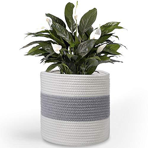 Cesta de cuerda de algodón para plantas de 25,4 cm, cesta de almacenamiento tejida, macetas de interior con asas, 28 x 27,9 cm, macetas modernas para interiores y decoración rústica para el hogar