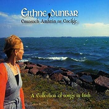 Cnuasach Amhráin As Gaeilge