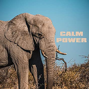 Calm Power