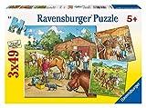 Ravensburger 09237 Mi Caballo - Puzzle (3 Modelos de 49 Piezas)