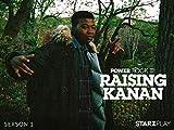 Power Book III: Raising Kanan - Season 1