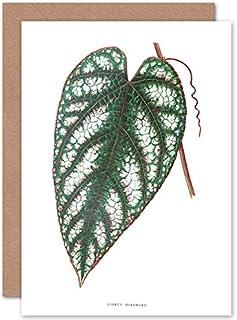 Fine Art Prints Leaf Cissus missfärgat gratulationskort med kuvert inuti premiumkvalitet