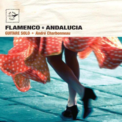 フラメンコ・ギター・ソロ