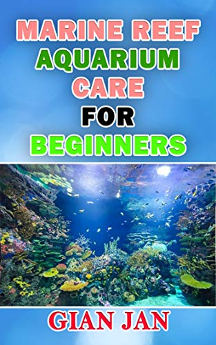 MARINE REEF AQUARIUM CARE FOR BEGINNERS (English Edition)