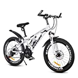 Adult Student Mountain Bike Outdoor Mountain Bike Male and Female Bicycles Outdoor Travel