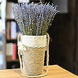 WHK 50/100 Tallos Paquetes de Lavanda Natural, Ramo de Lavanda Seca Provence Bouquet de Flores secas