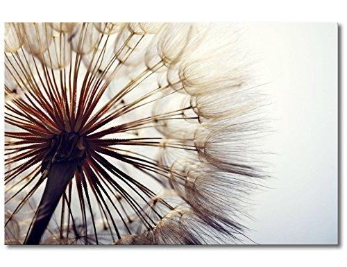WandbilderXXL, Stampa su Tela con soffione Big Dandelion, da 90cm x 60cmSu Telaio in Legno.Stampa su Tela per Camera da Letto e camerette.