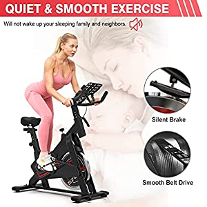 KLL Exercise Bike, Stationary Indoor Cycling Bike, Cycle Bike for Home Cardio Gym, Belt Drive Workout Bike with 35 LBS Flywheel
