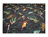 Stoff Baumwolle Rips nachtblau Dschungel Frosch Vogel