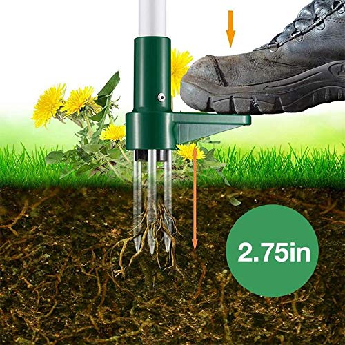 TAIYANYU Standing Plant Root Remover-3 Claws Stand Up Weed Puller Garden Hand Tool with 39
