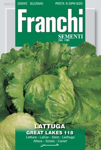 RWS graines de laitue Franchi Grands Lacs