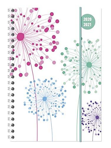 Collegetimer Blowballs 2020/2021 - Schüler-Kalender A5 (15x21 cm) - Pusteblume - Ringbindung - Weekly - 224 Seiten - Terminplaner - Alpha Edition (Collegetimer A5 Ringbuch)