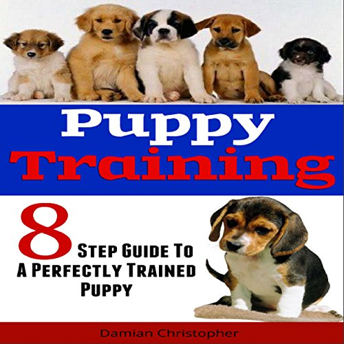 8 Step Guide to a Perfectly Trained Puppy Titelbild