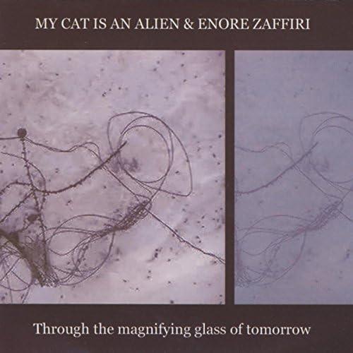 My Cat is An Alien & Enore Zaffiri