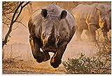 APAZSH Cuadros Decoracion Póster de Animales, póster de Arte en Lienzo de Rinoceronte Negro y Poster de Decoracion de impresión de Cuadros artísticas de Pared 60x90cm x1 Sin Marco