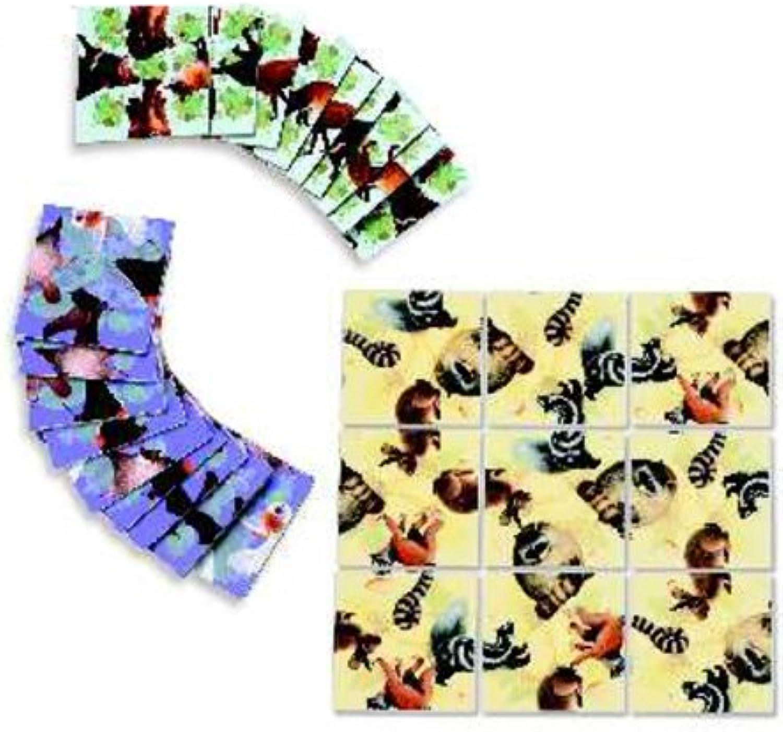Squzzle Puzzle  Nocturnal Animals
