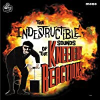 The Indestructible Sounds of [Analog]