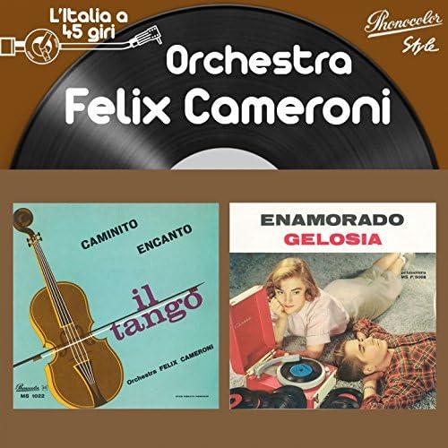 Orchestra Felix Cameroni