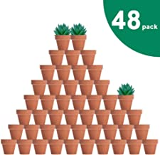 48 Pcs Tiny Terracotta Pots - 2 inch Small Mini Clay Pots with Drainage Holes Flower Nursery Terra Cotta Pots for Indoor/Outdoor Succulent Plants, Crafts, Wedding Favor