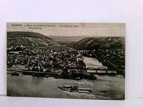 Seltene AK Bingen am Rhein vom Niederwald gesehen. Mündung der Nahe, Scharlachberg, Schiff, Ortsansicht, Panoramablick, Brücken