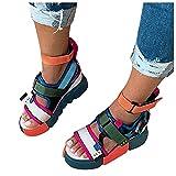 Celucke Sandali con Zeppa da Donna con Abbinamento di Colore Estate Fibbia Cinturino Caviglia Punta Aperta Sandali