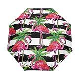 Emoya Paraguas Compacto Resistente al Viento, diseño de pájaros y Palmeras Tropicales, para Abrir y Cerrar el Paraguas de Viaje