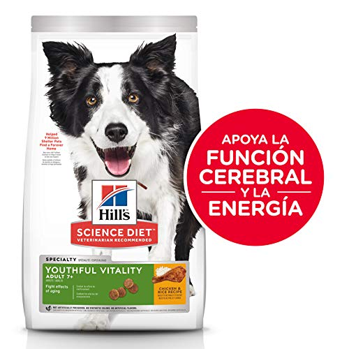 Hill's Science Diet Senior Dog Food