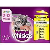 Multipack de 4 bolsitas de 85g Casserole de aves para gatos junior (Pack de 13)