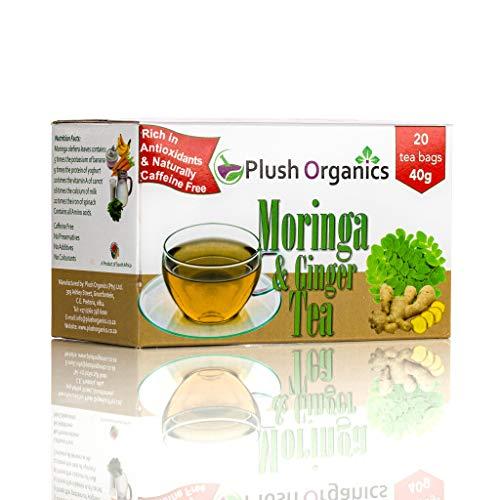 Organic Moringa & Ginger Tea – 20 Unbleached Tea Bags Kosher, Caffeine-Free, GMO-Free, Detox, Cleanse, Source of Calcium, High in Anti Oxidants
