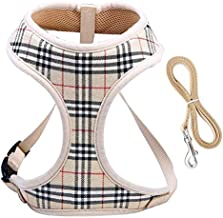 Dog Harnesses for Small Dogs,Super Soft & Comfortable Dog Harness,Easy To Adjust Harness for Small Dogs,Padded Mesh Material for Breathability and Secure Fit,Lightweight Shoulder And Chest Vest Ideal
