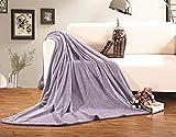 Elegant Comfort Luxury Velvety Softness Fuzzy Plush Micro-Velour Ultra-Soft Blanket 100% Hypoallergenic, Full/Queen, Lavender
