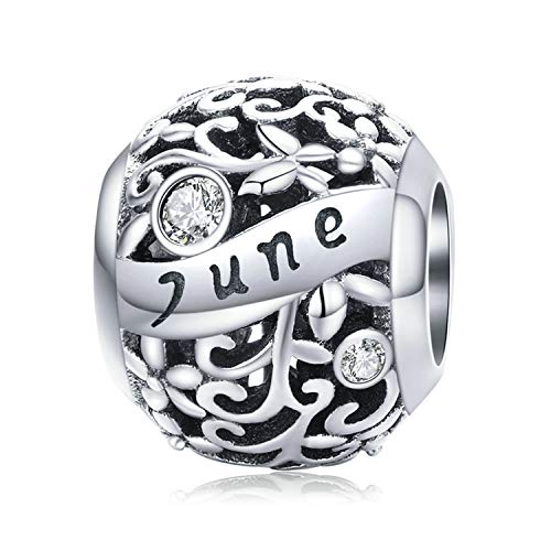 MUERDOU S925 Sterling Silver Birthstone Charm Fit Pandora Charms Bracelets and Necklaces Birthday Gifts for Women Girls