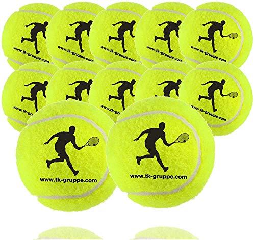 TK Gruppe Timo Klingler 12x Tennisbälle für Wettkampf & Training - Tennisball Tennis gelb für alle Beläge - Sandplatz & Halle - mit Tennisnetz zur Aufbewahrung (12x)