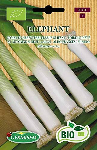 Germisem Orgánica Elephant Semillas de Puerro 2 g, ECBIO1016