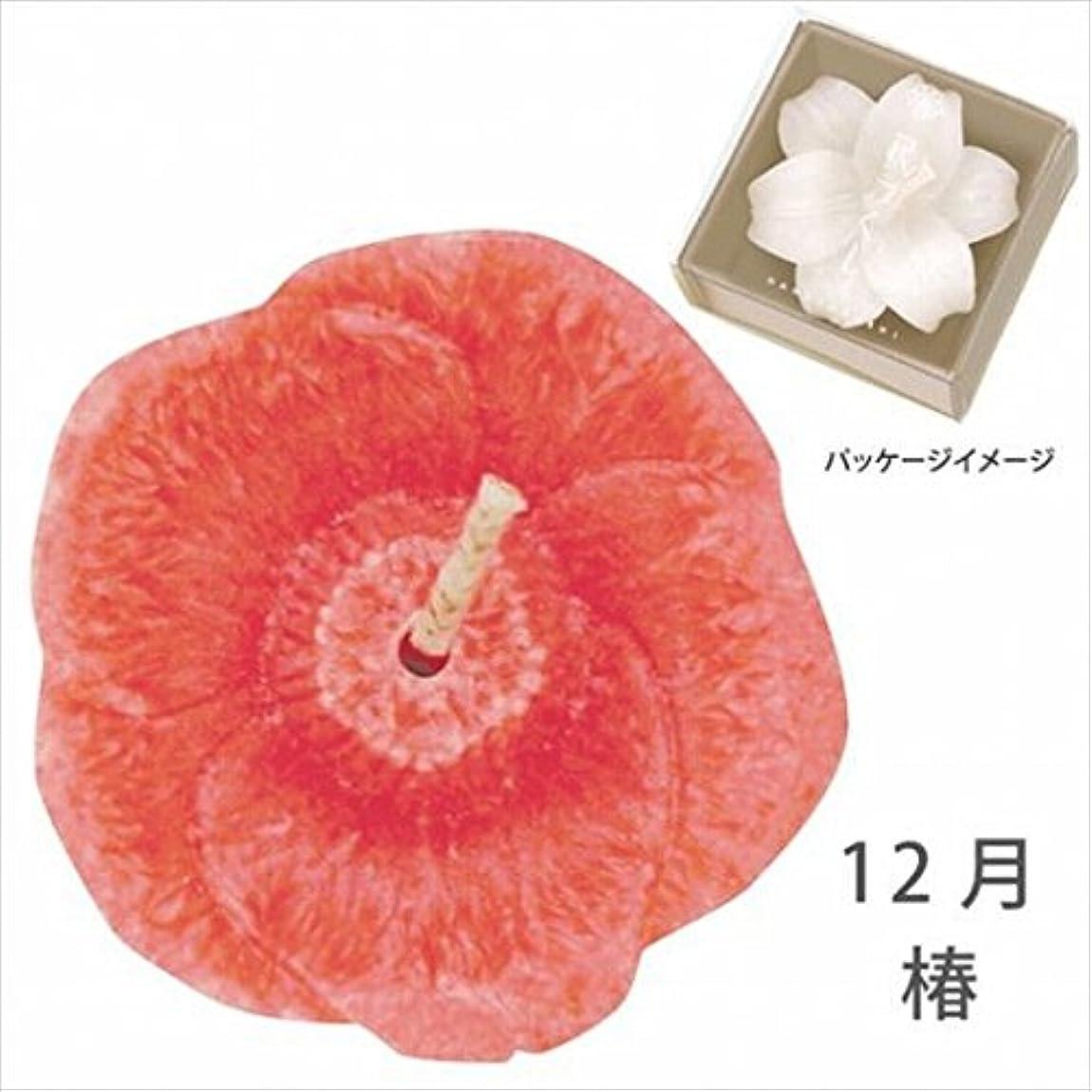 慢性的雲塩辛いカメヤマキャンドル( kameyama candle ) 花づくし(植物性) 椿 「 椿(12月) 」 キャンドル
