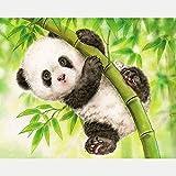 DTNO.I 5D Diamond Painting Kit Panda verde (30 x 40cm) DIY Fabricación de mosaicos pintura de diamantes Utilizado para mejorar el de salón pasillo y dormitorio