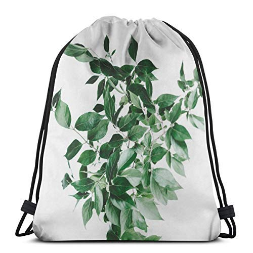 XCNGG Bundle Backpack Outdoor Shopping Knapsack A Green Leaf Rope-Pulling Bag Sports Bag Suitable for Fitness Shopping and Yoga